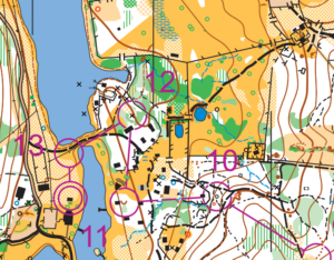 Orienteering course map